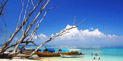 Top Beaches in Andaman & Nicobar