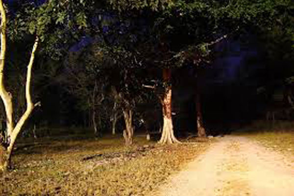 Delhi Cantonment, Haunted Places in Delhi