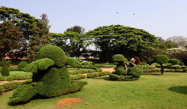 Hyderabad Botanical garden