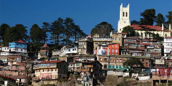 Shimla City View