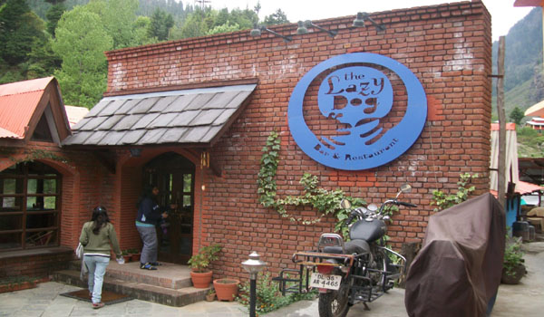The Lazy Dog Manali