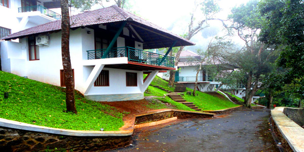 Forest Canopy Resort in Thekkady