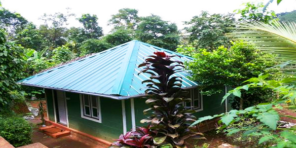 Harvest Fresh Farm Homestay in Thekkady