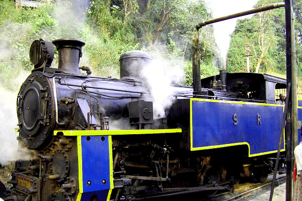 Nilgiri Mountains Railway in Ooty