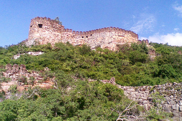 Udayagiri Fort in  Tamil Nadu