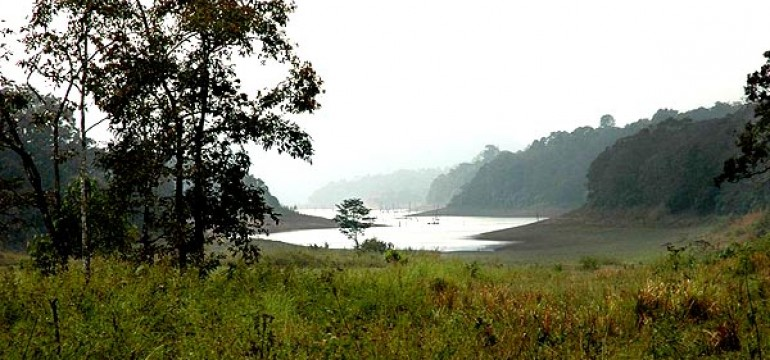 Periyar Travel Guide