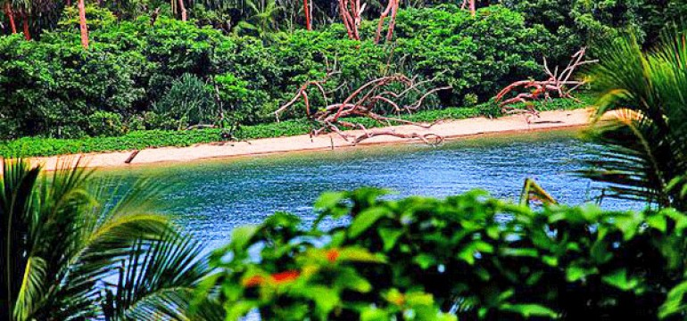 Top Islands In Andaman