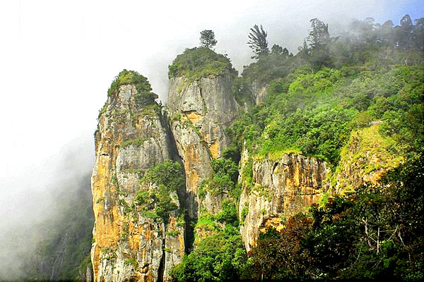 Famous Tourist Places to Visit in KodaiKanal