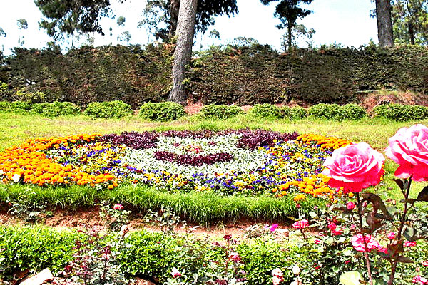 Famous Tourist Places To visit In Ooty